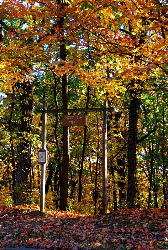 Detweiller-Park-Trail