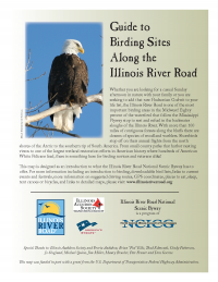 Guide to Birding along the Illinois River