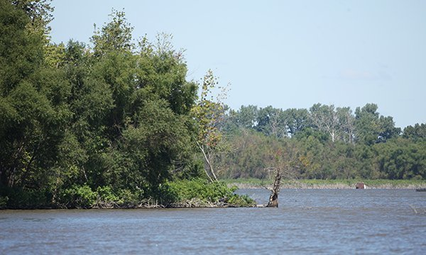 Anderson-Lake-State-Fish-and-Wildlife-Area