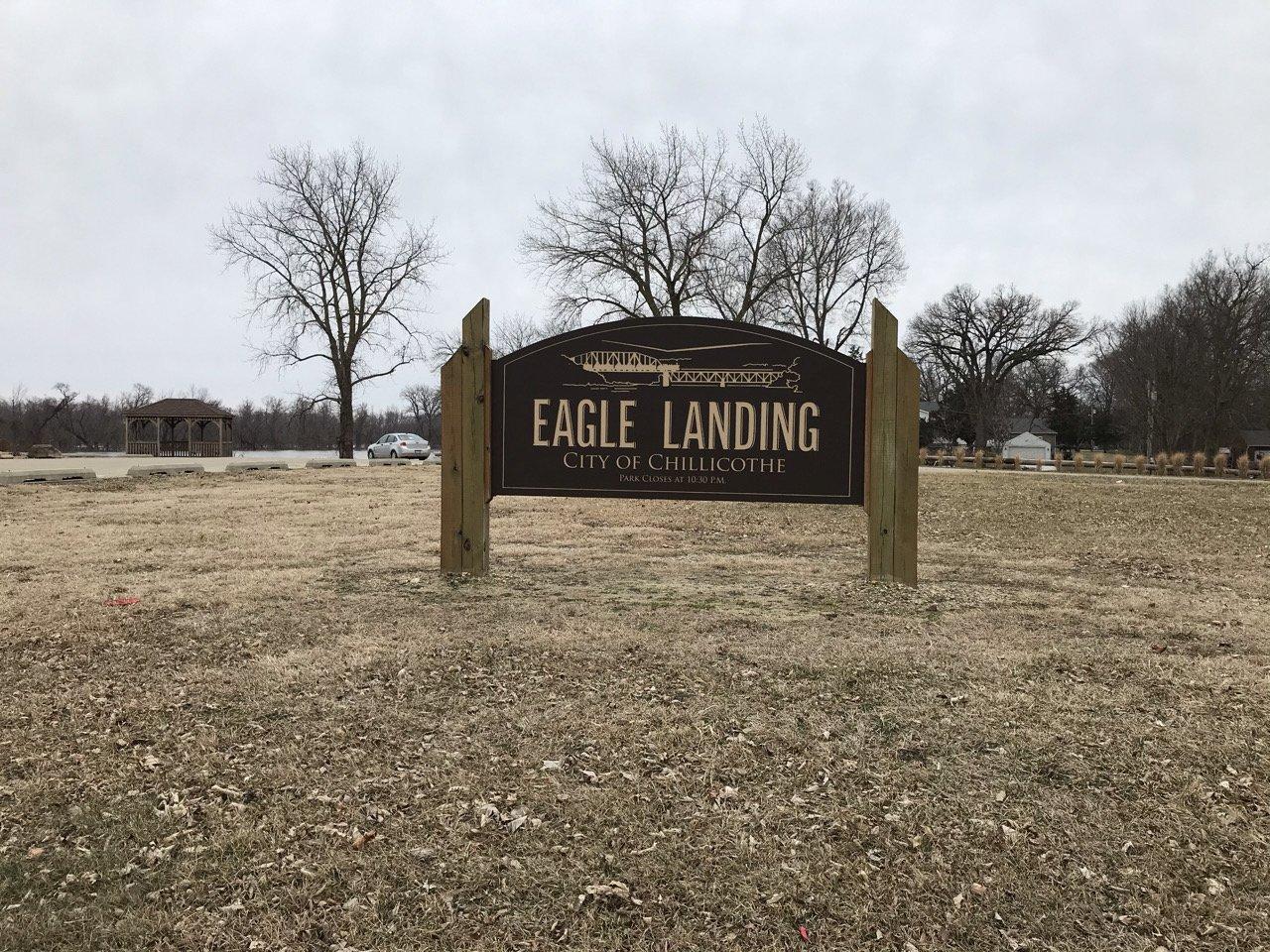 eagle-landing-2