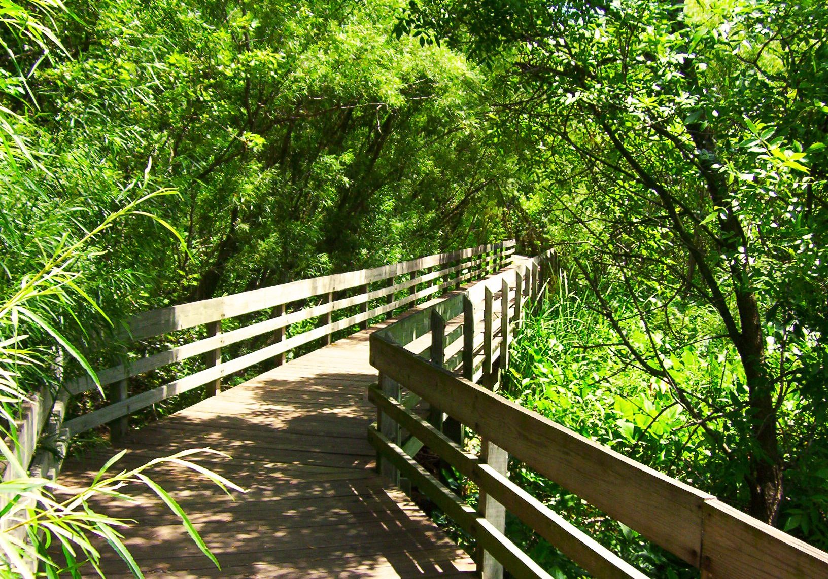 River Trail Boardwalk in East Peoria